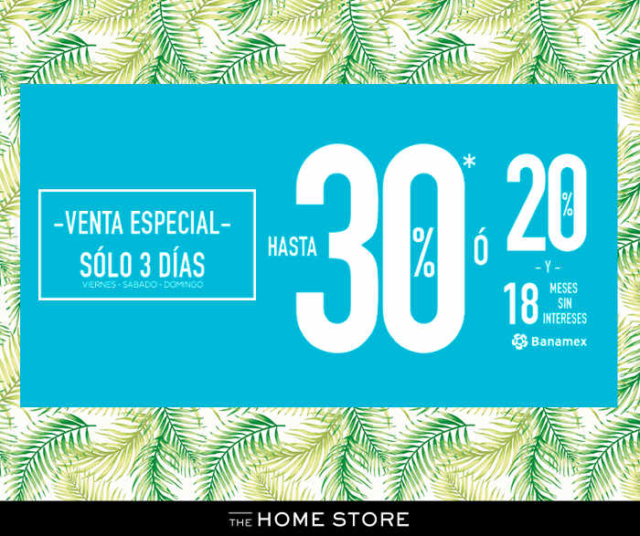Venta especial The Home Store Junio