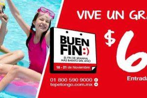 Promoción El Buen Fin 2016 en Tepetongo