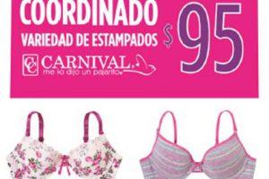 Suburbia artículo de la semana coordinado carnival del 23 al 26 de enero
