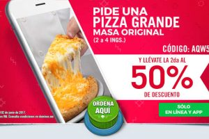 Hot Sale Domino's Pizza 2017