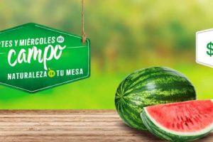 Comercial Mexicana frutas y verduras del campo 19 y 20 de Septiembre 2017