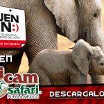 El Buen Fin 2017 Africam Safari