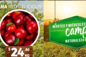 Ofertas Mega Soriana Martes y Miércoles del Campo 5 y 6 de febrero 2019