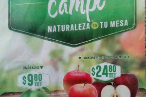 Frutas y Verduras Soriana 21 y 22 de mayo 2019