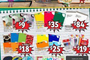 Folleto de ofertas Soriana Mercado y Express del 9 al 22 de Agosto 2019