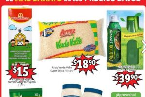 Soriana Mercado - Folleto de ofertas del 3 al 16 de enero 2020