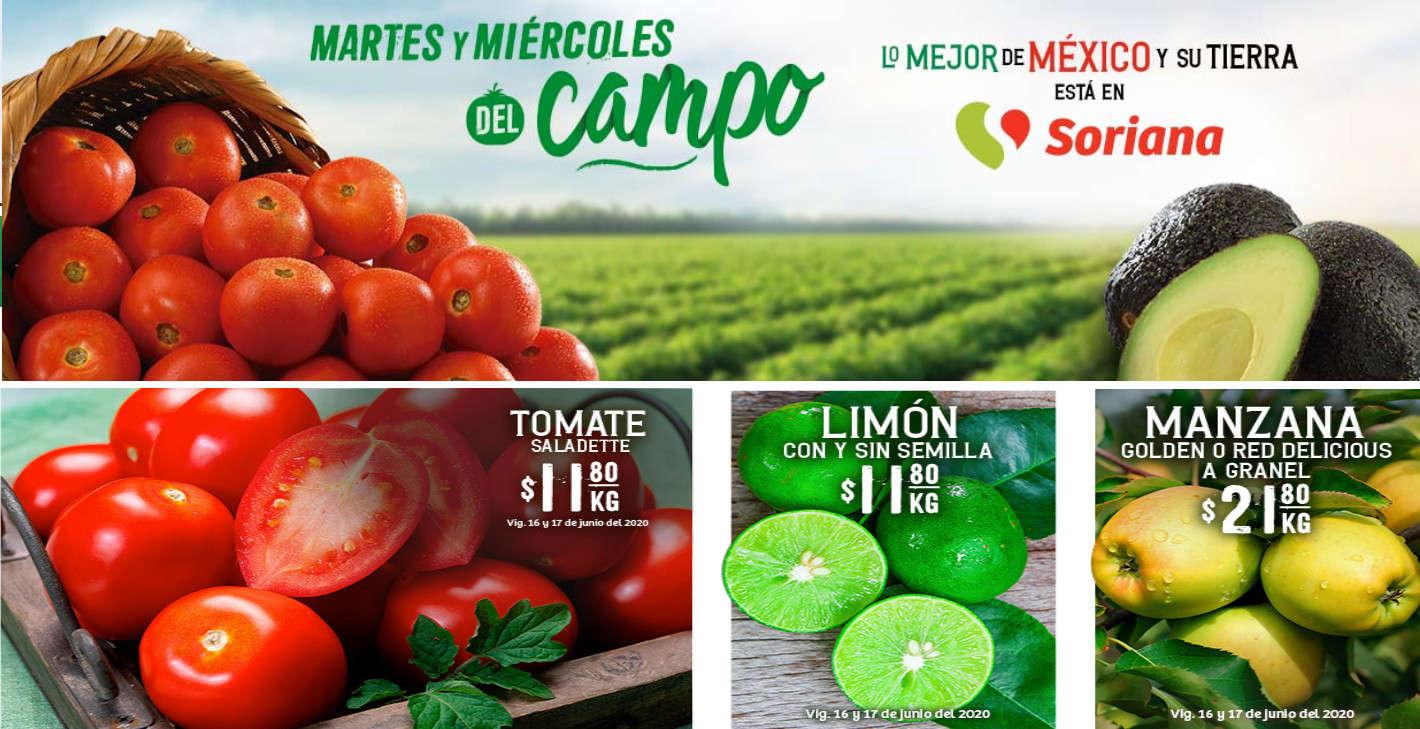 Ofertas Soriana Súper Martes y Miércoles del Campo 16 y 17 de junio 2020
