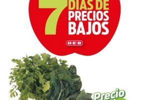 Folleto HEB Frutas y Verduras del 19 al 25 de enero 2021
