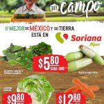 Folleto Soriana Martes y Miércoles del Campo 2 y 3 de enero 2021