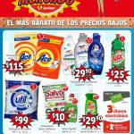 Folleto de ofertas Soriana Mercado 9 al 22 de abril 2021