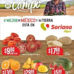 Folleto Soriana Martes y Miércoles del Campo 20 y 21 de abril 2021