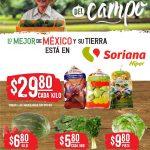 Folleto Soriana Martes y Miércoles del Campo 6 y 7 de abril 2021