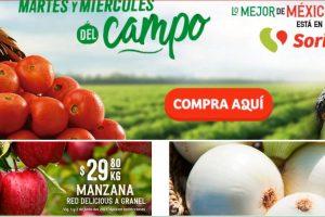 Folleto Soriana Martes y Miércoles del Campo 1 y 2 de junio 2021