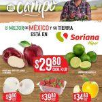Folleto Soriana Martes y Miércoles del Campo 4 y 5 de mayo 2021