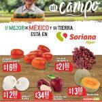 Folleto Soriana Martes y Miércoles del Campo 6 y 7 de julio 2021