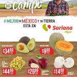 Folleto Soriana Martes y Miércoles del Campo 27 y 28 de julio 2021